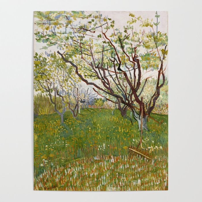 Flowering Orchard by Vincent van Gogh Poster