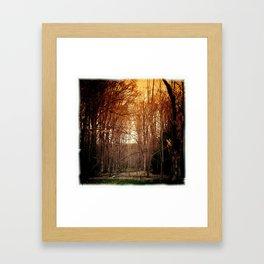 the dark forest Framed Art Print