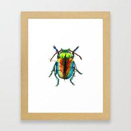 Beetle III Framed Art Print