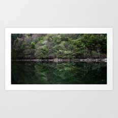 Reflections in lake Art Print