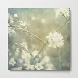 Blossoms of Spring Metal Print