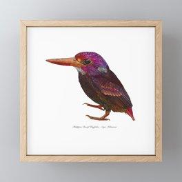 Philippine Dwarf Kingfisher Framed Mini Art Print