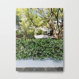 Charleston Star Jasmine Metal Print