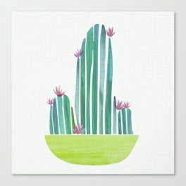 Spring Cactus Flowers Canvas Print