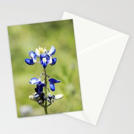 Last of the Bluebonnets Stationery Cards