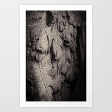 Feathers of Stone Art Print