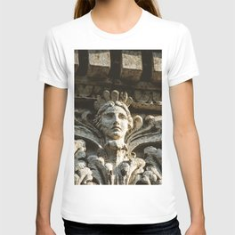 Uptown Chicago Architectural Detail Stone Face  T-shirt