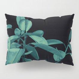 Rubber plant Pillow Sham