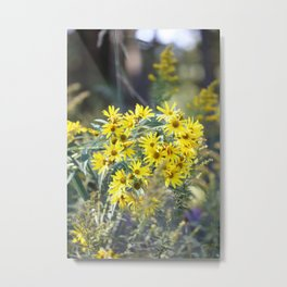 Nature's Bouquet Metal Print