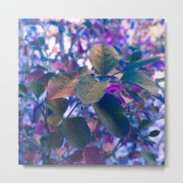 Purple Garden Metal Print