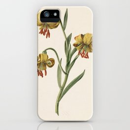 M. de Gijselaar - Branch with three yellow lilies (1834) iPhone Case