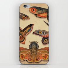 The Collection iPhone Skin