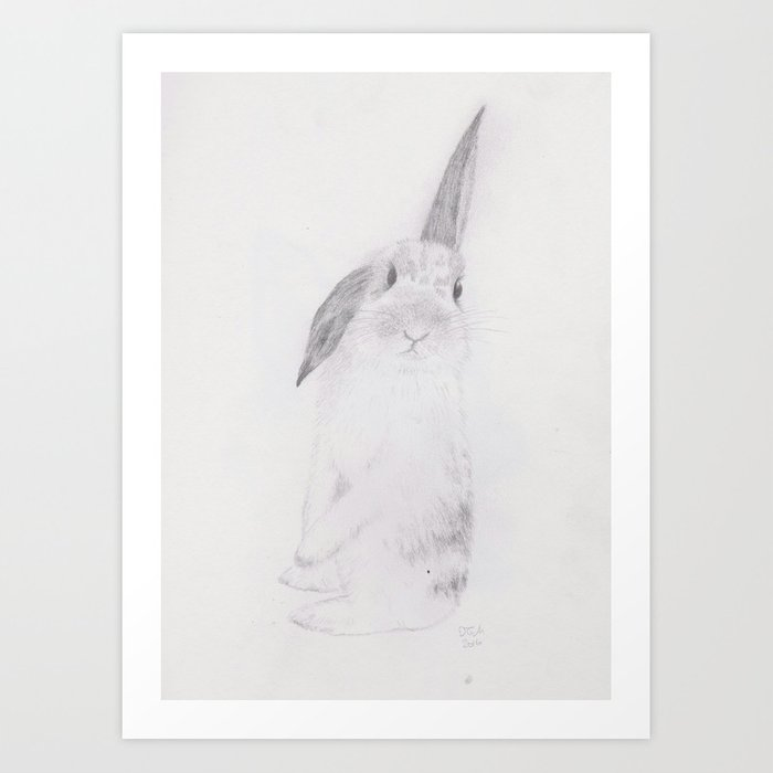 Rabbit Pencil Drawing Art Print By Crumbledoodle Society6