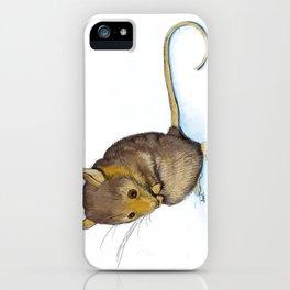 Mountain Pygmy-possum (Burramys parvus) Australian Native iPhone Case