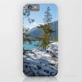 Clear Views iPhone Case