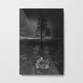 On the wrong side of the lake 3 Metal Print
