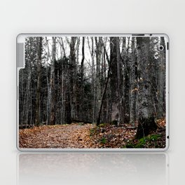 Chasing Autumn Laptop & iPad Skin