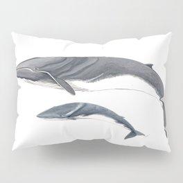 Fin whale Pillow Sham