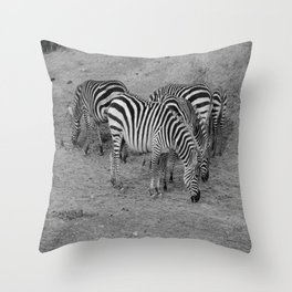 Cebras Throw Pillow