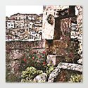 Sassi di Matera: stones and flowers by giuseppecocco
