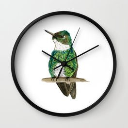 White-throated Hummingbird Wall Clock