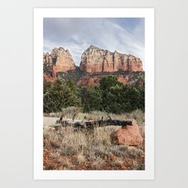Fallen tree Sedona Arizona Art Print