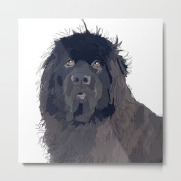 Newfoundland Dog (black) Metal Print