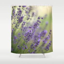 Dream Garden Lavender Shower Curtain