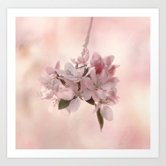 Blossom Treasure Art Print