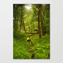 Green Spring Trees Canvas Print