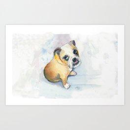 Sweet Bulldog Puppy Art Print