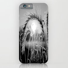 Wheat Sunrise B&W iPhone 6s Slim Case