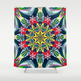 Decorative Winter Star and Snowflakes Shower Curtain