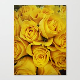 Normal Yellow Rose Canvas Print