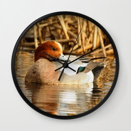 Eurasian Wigeon at the Pond Wall Clock