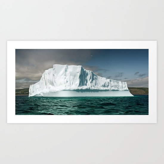 Northern Visitor Art Print
