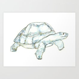 Tortoise in greens and blues Art Print