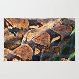 Sleeping Snake Rug