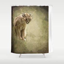 Caracal- wild cat Shower Curtain