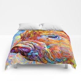 Piglet Comforters