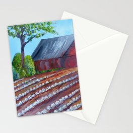 Rows of Cotton Stationery Cards