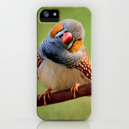 Change Your Opinions - Bird Art iPhone Case