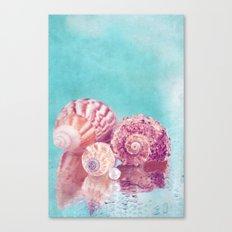 Seashell Group Canvas Print