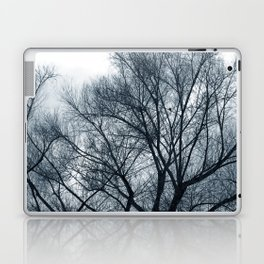 Bare Trees on a Grey Day Laptop & iPad Skin