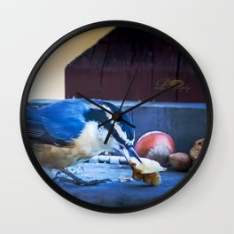 Red Breasted Nuthatch Wall Clock