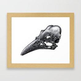 Bird Skeleton Framed Art Print