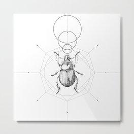 Dots, Lines & Beetle Metal Print