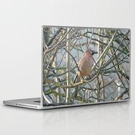 Joyful jay Laptop & iPad Skin
