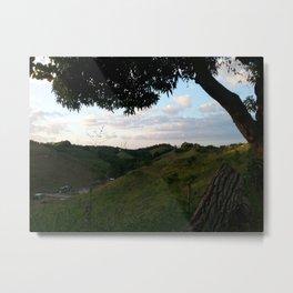 Rincon landscape Metal Print