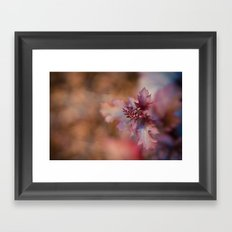 Reaching Up Framed Art Print
